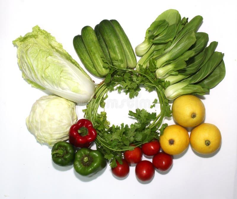 Variation av grönsaker på en vit bakgrund och en härlig gran, illustrerade royaltyfri bild