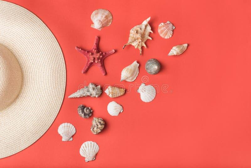 Variation av snäckskal och del av sugrörhatten Bo korall på bakgrunden Lekmanna- l?genhet Marin- begrepp royaltyfri bild