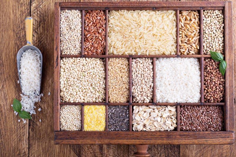 Variation av sunda korn och frö arkivbild