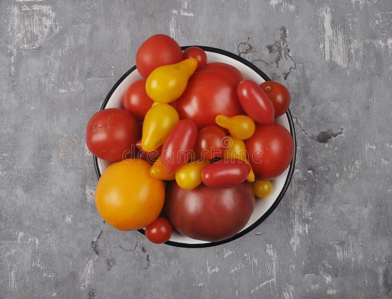 Variation av tomatcultivars i emaljbunke på betong royaltyfria foton