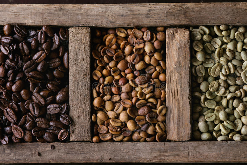 Variation of coffee beans stock photography