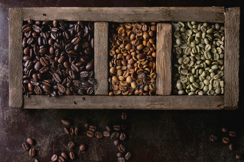 Variation of coffee beans royalty free stock photos