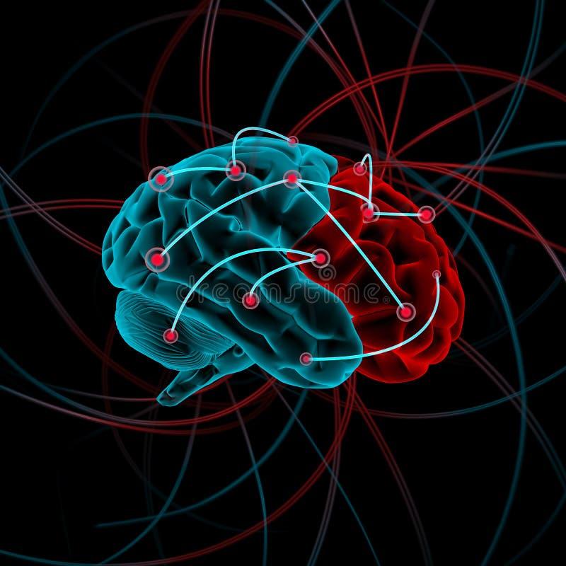variation för illustration för hjärnbw-färg fyra royaltyfri bild