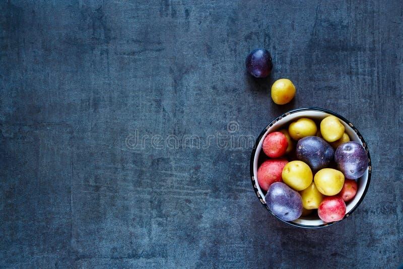 Variationer av nya potatisar royaltyfri foto