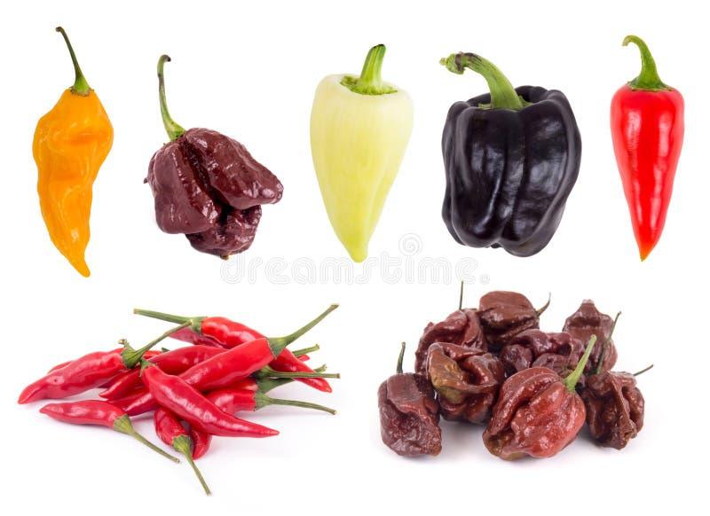 Variationssamling för söt och varm peppar arkivbilder