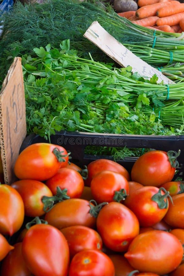 Variationssortiment av nya mogna grönsaker och för tomatpersilja för örter organisk dill på bondemarknaden Sommarnedgångskörd royaltyfri bild