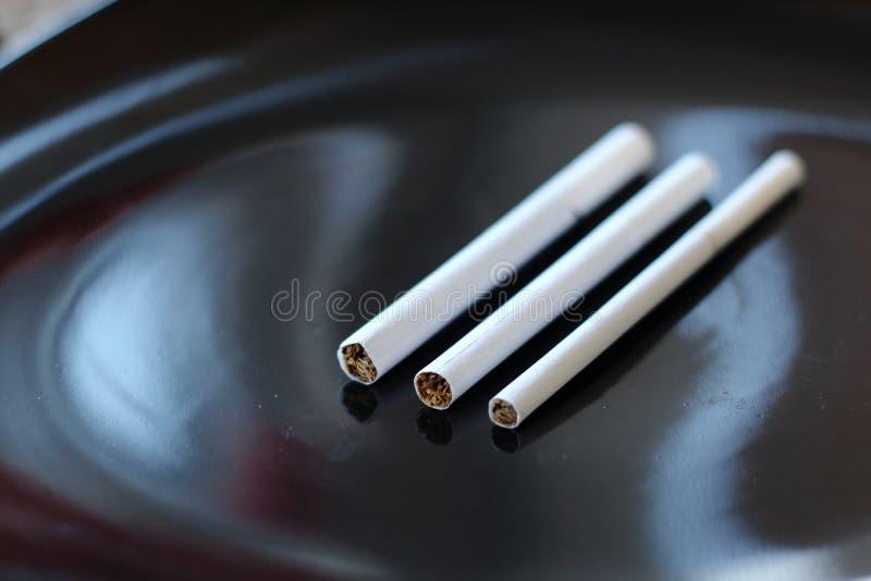 Variationstyper av studion för filtercigarettcloseup royaltyfria foton