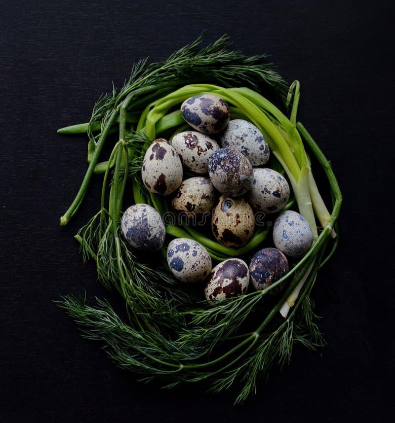 Varicoloured яичка триперсток окруженные с зелеными луками и укропом стоковые фотографии rf