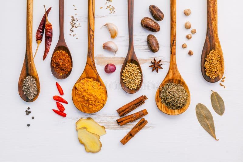 Varie erbe e spezie in cucchiai di legno Disposizione piana delle spezie dentro immagini stock