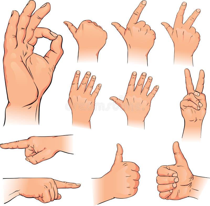 Varie pose delle mani umane illustrazione vettoriale