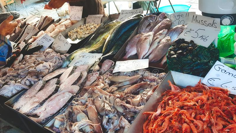 Varied fresh fish and seafood in trays at a fishmonger`s stand in an open-air fish market stock photography