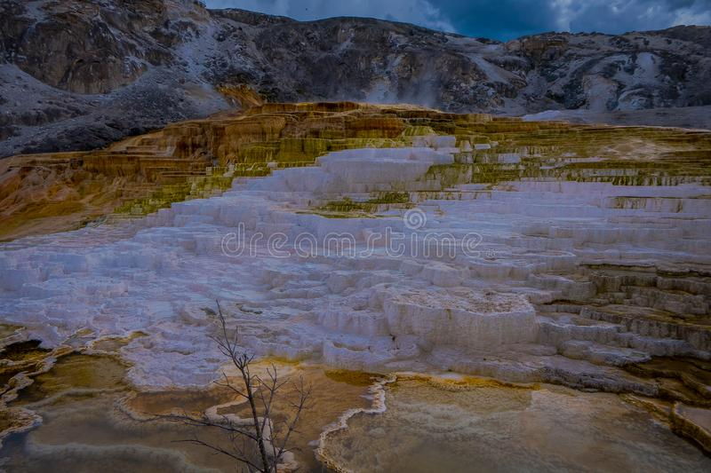 Varied Hot Spring Thermal Colors - Mammoth Hot Springs is Yellowstone s only major thermal area located well outside the. Caldera. The terraces change royalty free stock images