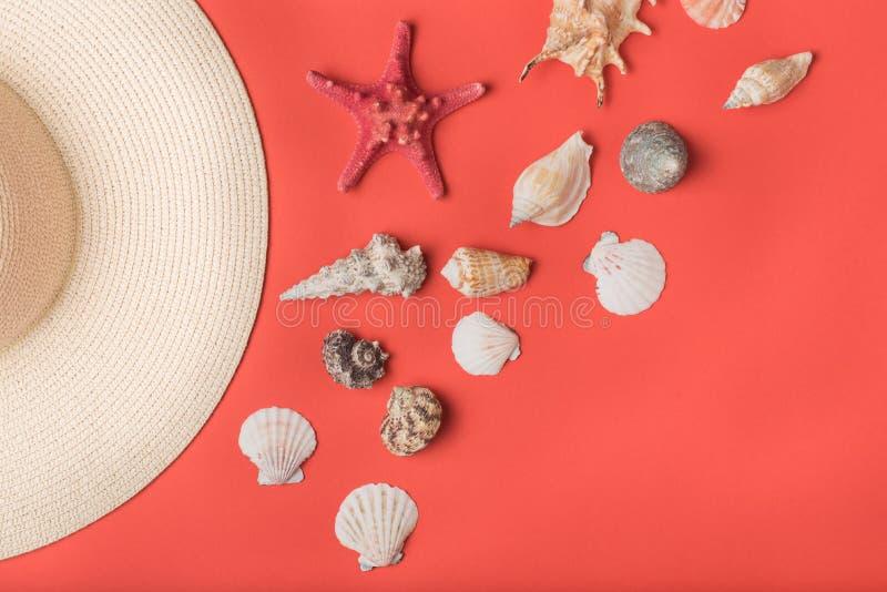 Variedad de conchas marinas y pieza del sombrero de paja Coral de vida en el fondo Endecha plana Concepto marino fotos de archivo libres de regalías
