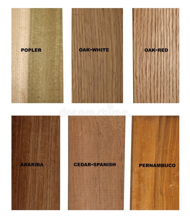Variedad de muestras de madera stock de ilustración