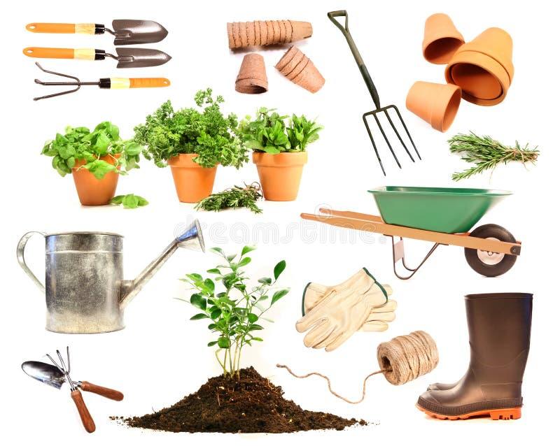 Variedad de objetos para el resorte que planta en blanco imagenes de archivo