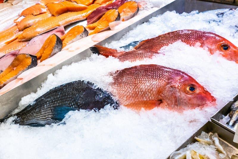 Variedad de pescados frescos crudos preservados en el hielo fotografía de archivo