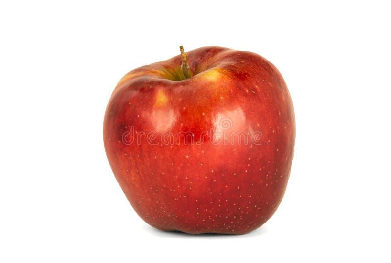 Variedad de wh rojo maduro del aislante del ` de Jonagold del ` del domestica del Malus de las manzanas imágenes de archivo libres de regalías