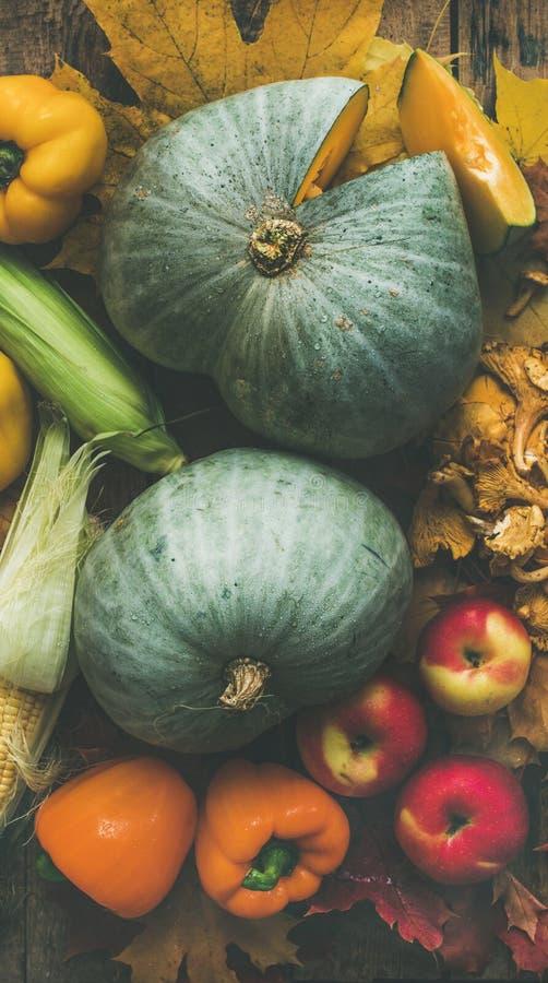 Variedade colorida dos vegetais da queda sobre o fundo de madeira da tabela Textura do alimento fotografia de stock royalty free