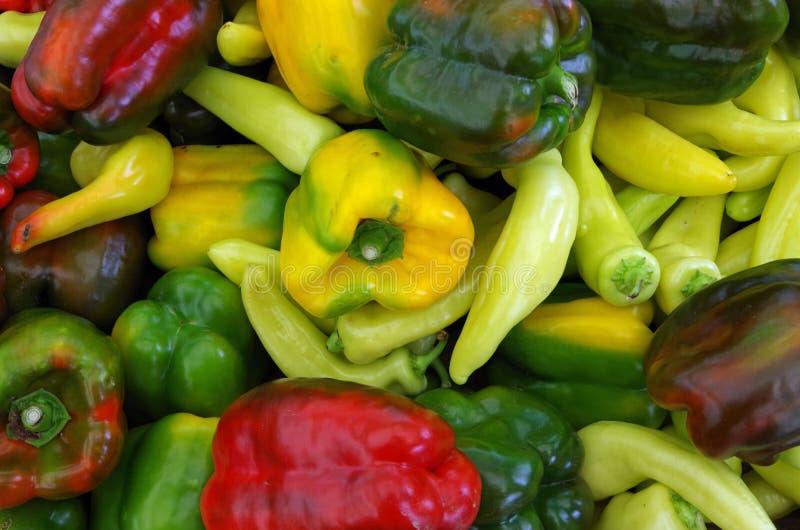 Variedade colorida misturada da pimenta imagem de stock