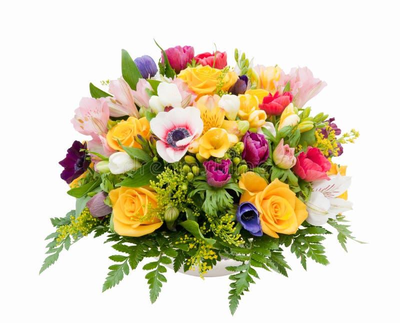 Variedade da flor da mola imagem de stock royalty free