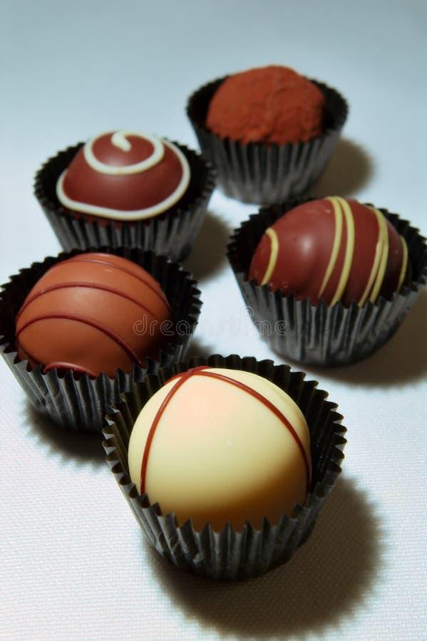 Variedade das trufas de chocolate imagem de stock royalty free
