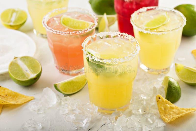 Variedade de cocktail do margarita fotos de stock