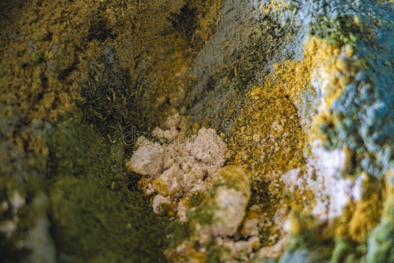 Variedade de especiarias, de temperos e de ervas coloridos naturais para cozinhar fotografia de stock