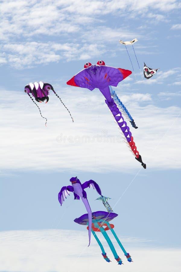 Variedade de figura papagaios em Adelaide International Kite Festi fotos de stock royalty free
