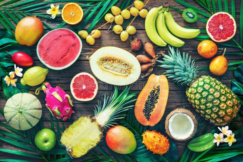 Variedade de frutos tropicais com as folhas das palmeiras e do exot foto de stock royalty free