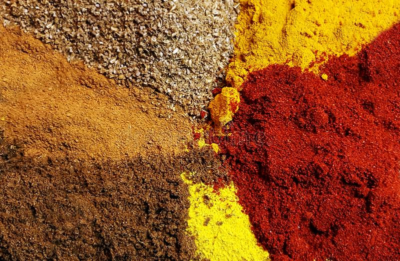 Variedade de pó indiano das especiarias fotografia de stock