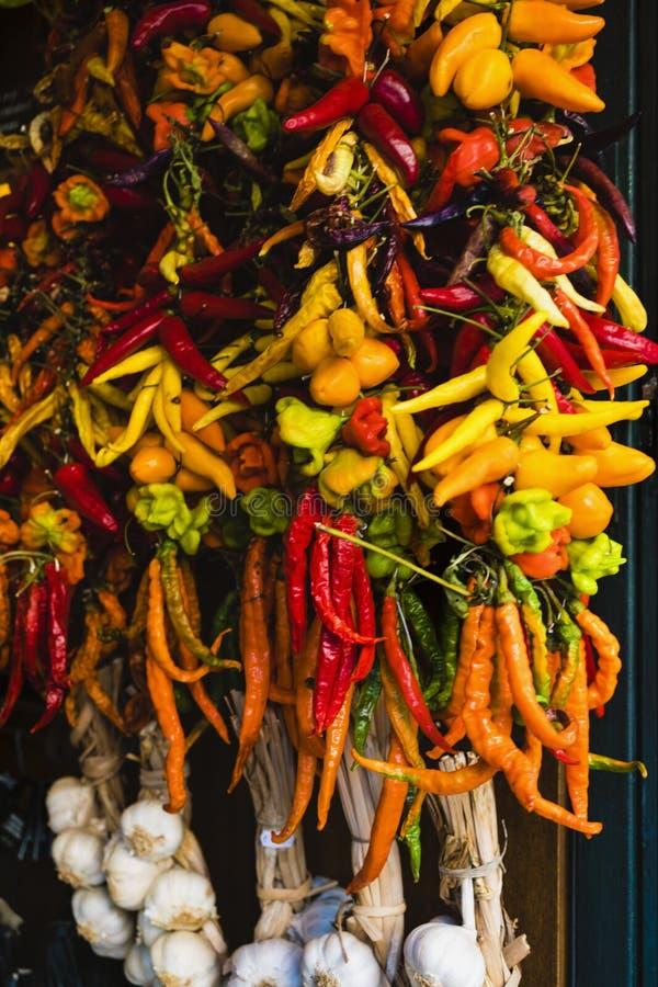 Variedade de pimentos fotos de stock royalty free