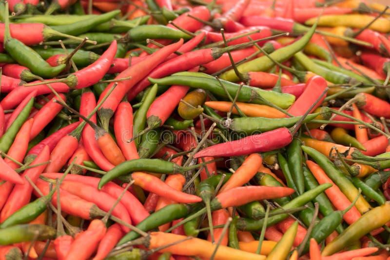 Variedade de pimentos de pimentão coloridos frescos foto de stock