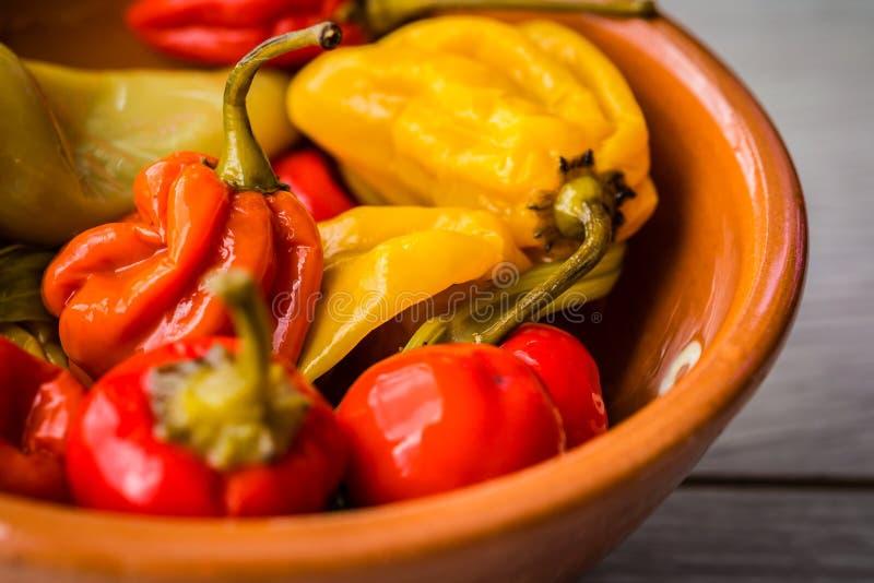 Variedade de pimentos quentes numa tigela imagem de stock royalty free