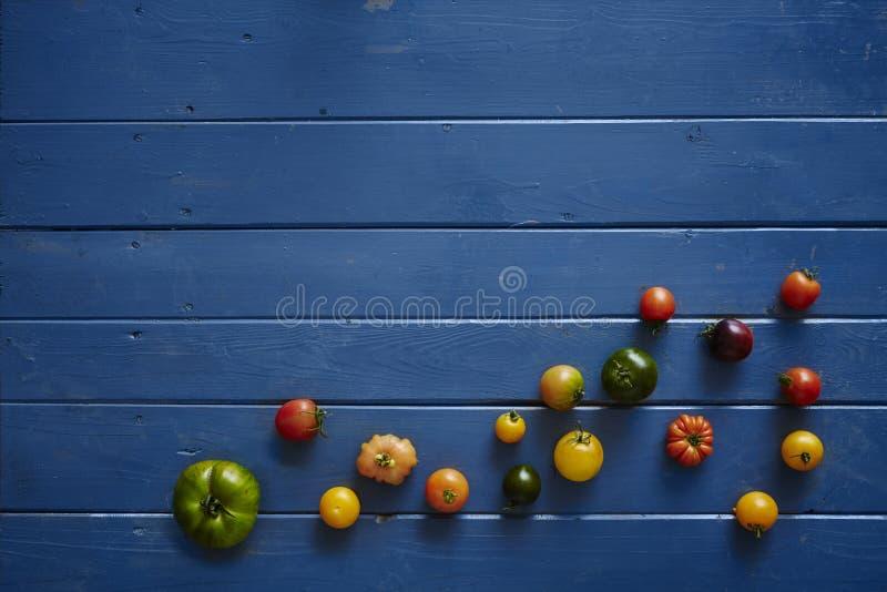 Variedade de tomates na tabela de madeira azul foto de stock