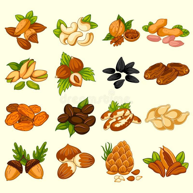 Variedade diferente de frutos e de porcas secos ilustração royalty free