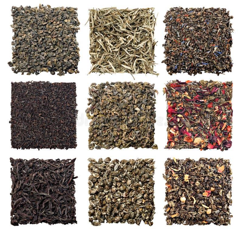 Variedade do chá seco foto de stock royalty free