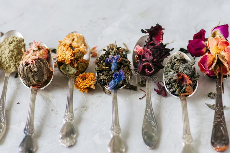 Variedade do chá verde seco erval e da flor no colheres em um w foto de stock royalty free