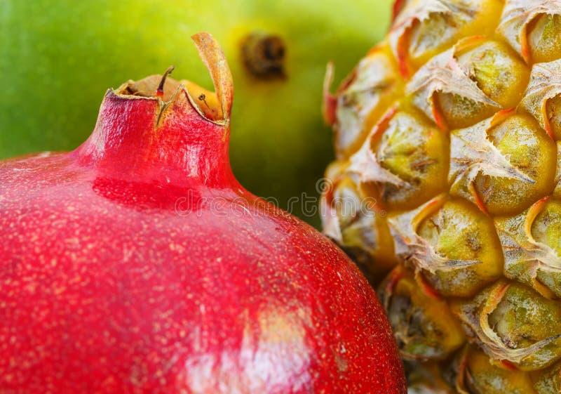 Variedade do close-up exótico dos frutos foto de stock
