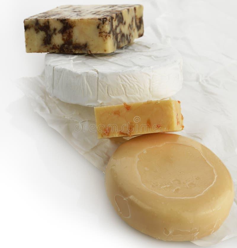 Variedade do queijo imagens de stock