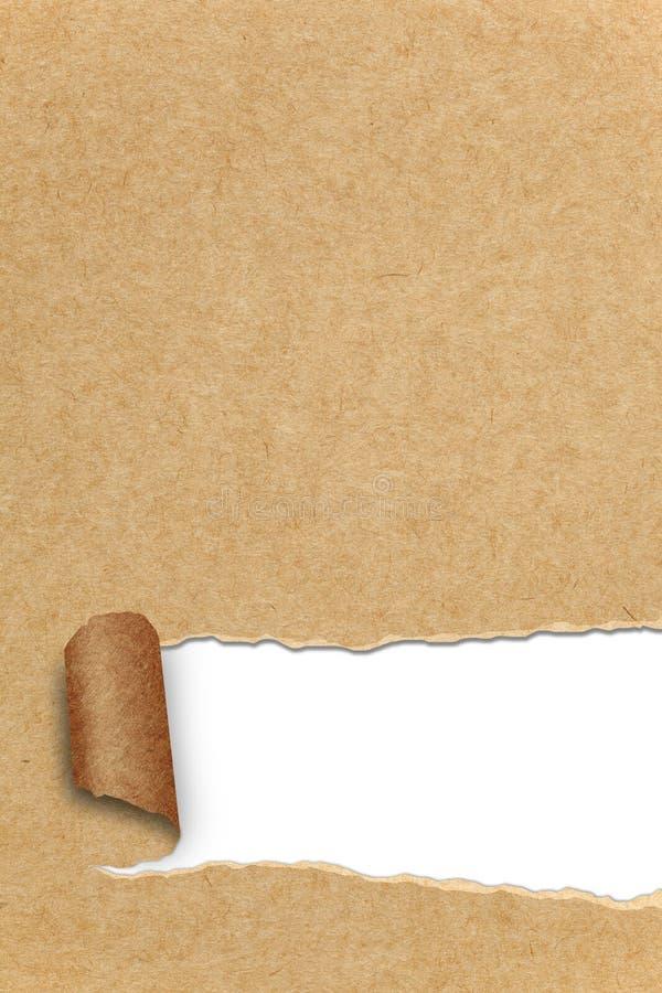 A variedade do rasgado recicl ilustração do vetor