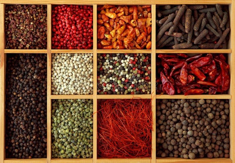 Variedade dos peppercorns e do pimentão fotos de stock royalty free
