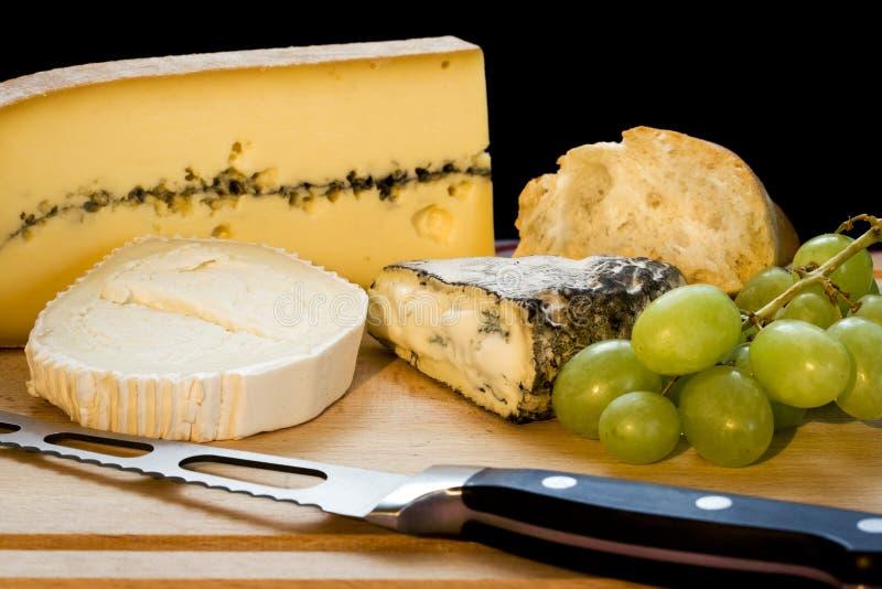 Variedade forte do queijo foto de stock royalty free