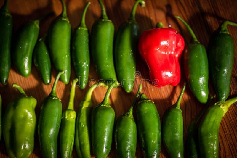 Variedade fresca de muitos pimentos verdes e de um pimento vermelho sobre fundo de madeira foto de stock royalty free