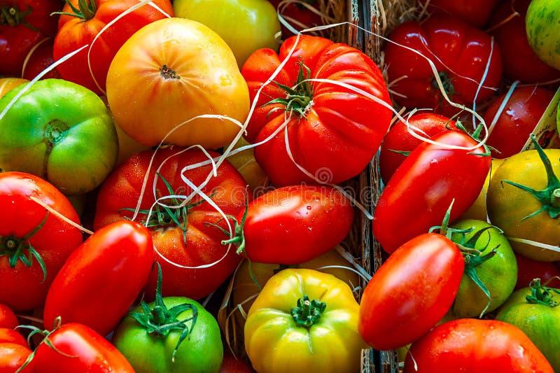 Variedades coloridas de los tomates fotografía de archivo