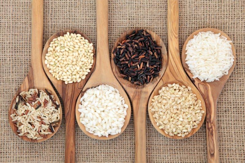 Variedades do arroz imagem de stock