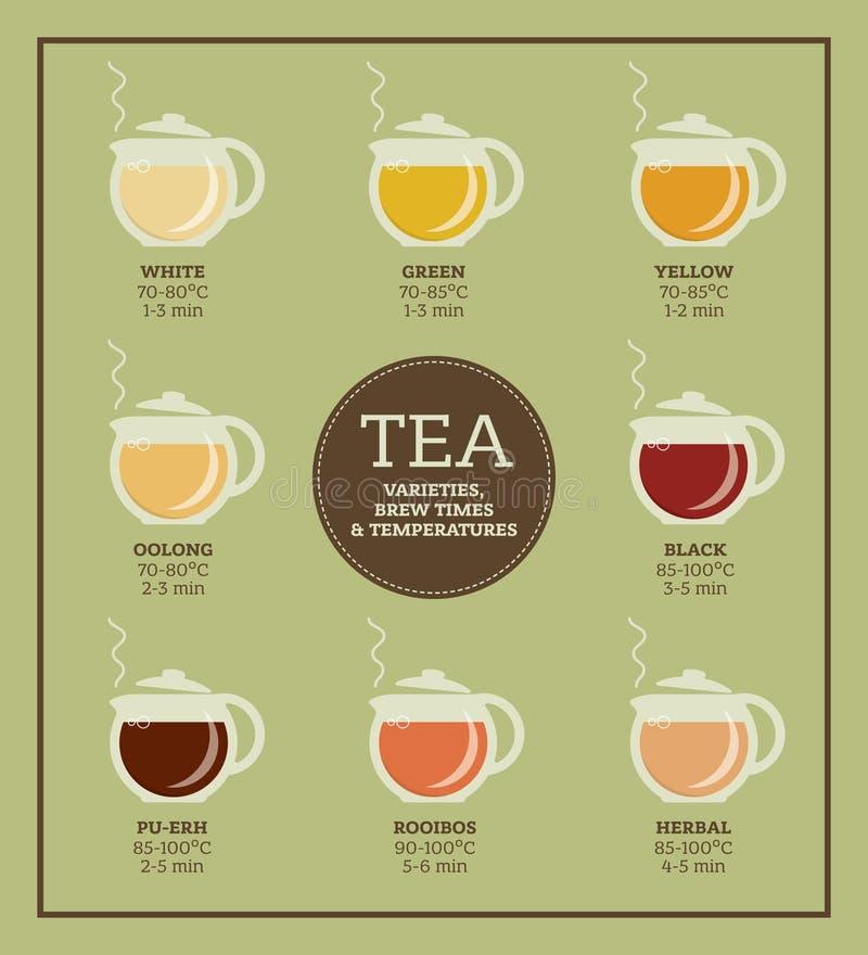 Variedades do chá Tempo e temperatura da fabricação de cerveja imagem de stock royalty free