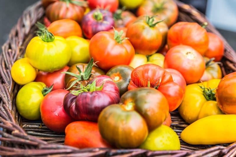 Variedades frescas do tomate da herança fotografia de stock royalty free