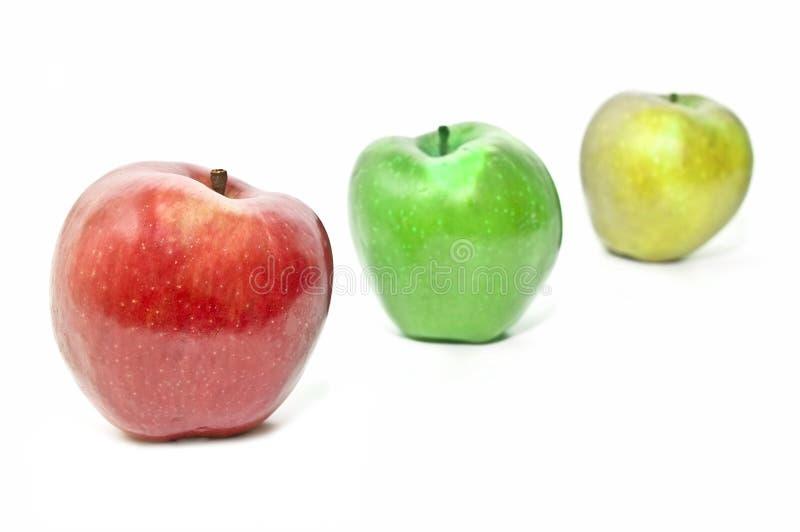 varierande äpplen royaltyfria bilder