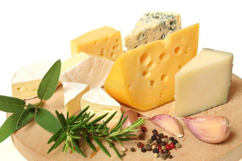 Varietà del formaggio fotografia stock libera da diritti
