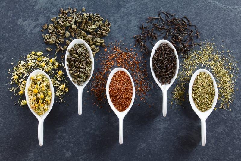 Varietà di foglie di tè secche sciolte immagini stock libere da diritti